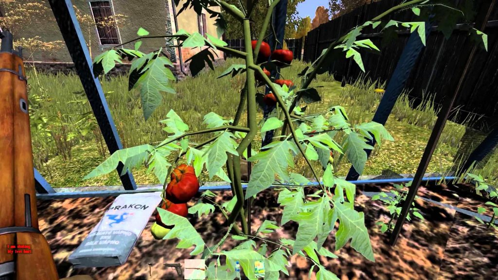dayz-0-50-horticulture-guide-how-to-grow-tomato-plants1